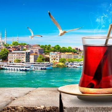 Что нужно сделать туристам по возвращении из Турции